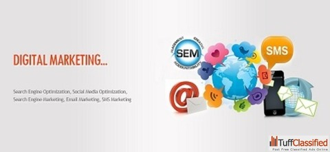 Looking for best website design and development company in India