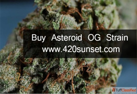 Buy Asteroid OG Strain online | 420sunset.com