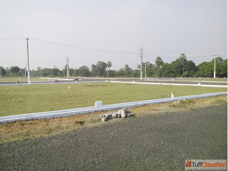 167 Sq. Yards - East Plot-Half Km to Diwancheruvu National NH16