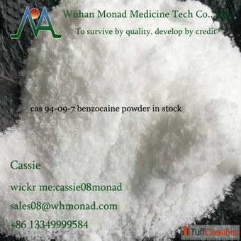 Factory price pain killer cas 94-09-7 Benzocaine powder