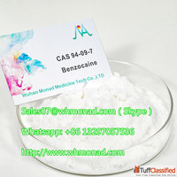 China Supply High Quality Powder 99% Purity CAS 94-09-7 Benz...