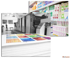 Paper Products Manufacturer in India