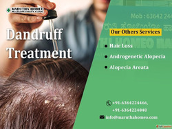 Best Homeo Treatment For Hair Loss and Dandruff BTM layout
