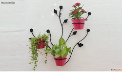 Browse beautiful designs of wall hanging pots at Wooden Stre...