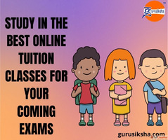 Study In The Best Online Tuition Classes For Your Coming Exa...