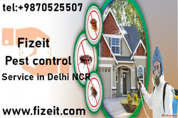 Book Online Pest Control Services in Gurgaon and Dwarka, Del...