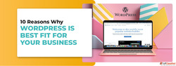 10 Reasons Why Wordpress is Best Fit for Your Business
