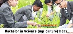 Bsc Agriculture College in Punjab