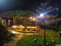 Best Resort In Coorg For Couples