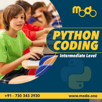 Learn Python Coding Online for Intermediates