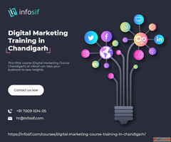 Digital Marketing Training in Chandigarh – Infosif