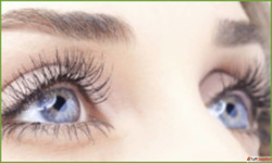 Book your appointment to get the best Eye Specialist in Pune