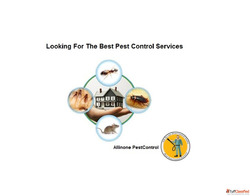 Looking For The Best Pest Control Services in Faridabad, Gur...
