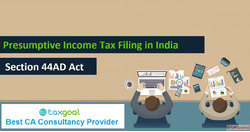 Presumptive Income Tax Filing