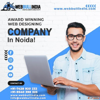 Looking for the best website designing company in Noida?